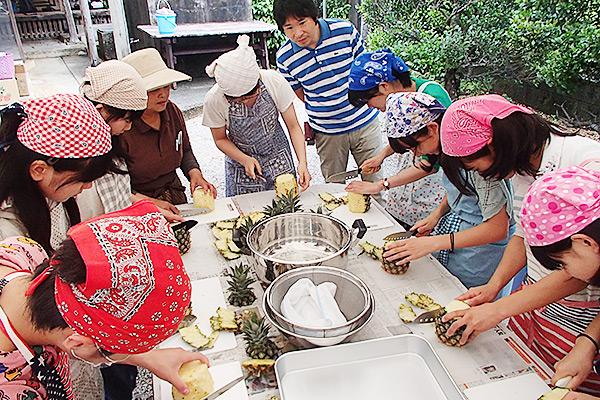 パイン収穫とジャムづくり体験/パインジャムづくり体験