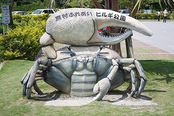 沖縄 体験 やんばる自然塾とは 東村ふれあいヒルギ公園