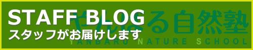 沖縄を体験やんばる自然塾公式ブログ