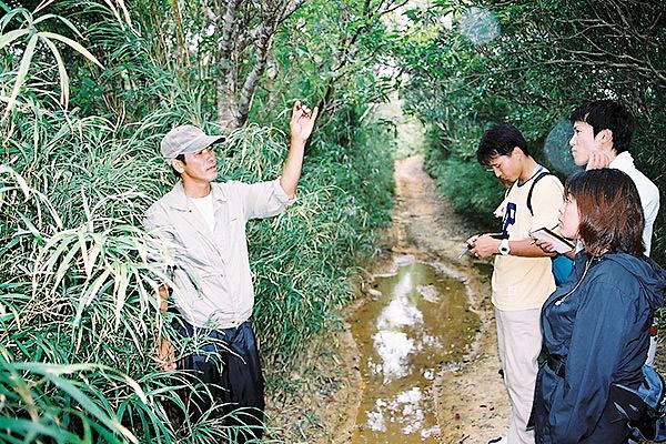 やんばるの森トレッキング 沖縄修学旅行・団体向けプログラム