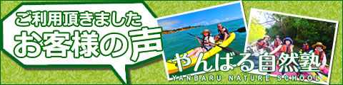 やんばる自然塾 沖縄を体験したお客様の声
