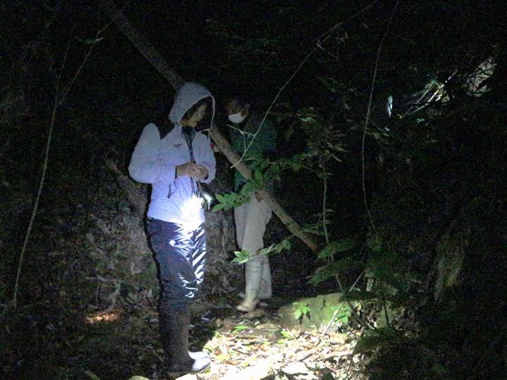 行ってきました! 夜の生き物探し探検隊!