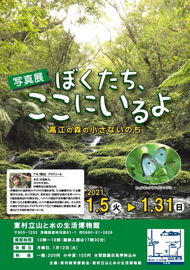 ぼくたちここにいるよ 高江の森の小さないのち